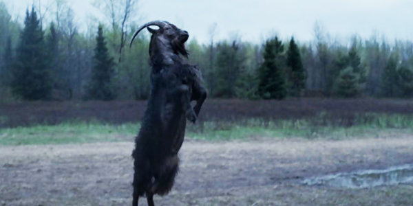 the-witch-2015-black-phillip-goat-gores-father-review-600x300
